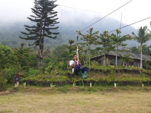 jual flying fox , harga flying fox